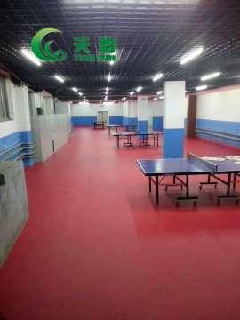 吉林省乒乓球训练馆【天韵运动地胶】